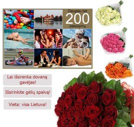 A set of 250 entertainment Lithuania + roses
