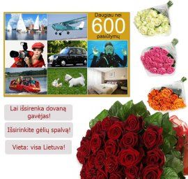A set of 600 entertainment Lithuania + roses