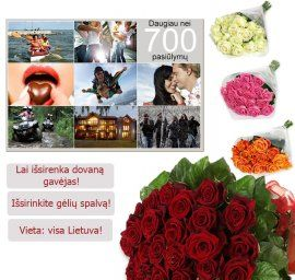 A set of 700 entertainment Lithuania + roses