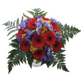 Transvaal daisy and iris bouquet